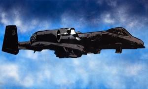 Fig. 5. Avion 2009, Acrylic on Canvas, 100 x 166 cm.