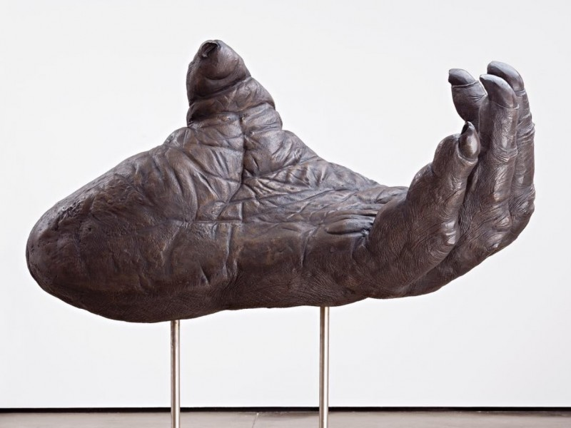 Lisa Roet 'Orang-Utan, The Cradle' 2014